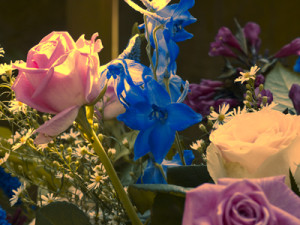 bloem-van-jpeg