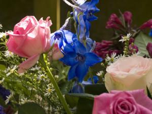 bloem-van-raw