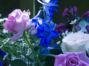 bloem-verkeerde-wb-van-raw